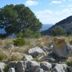 Steiniger Pfad zur Küste