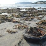 Reifen am Strand nach dem Sturm